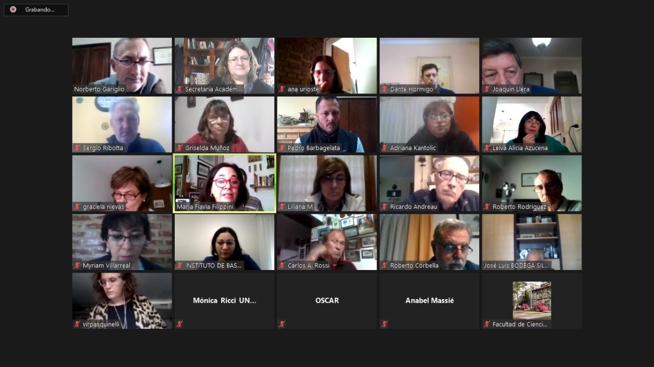 Segunda reunión anual de AUDEAS 2020 virtual