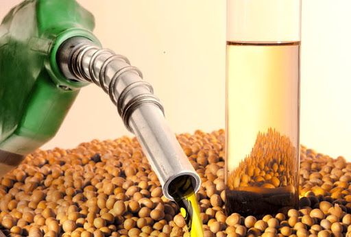 La industria Pyme del Biodiesel va a la quiebra