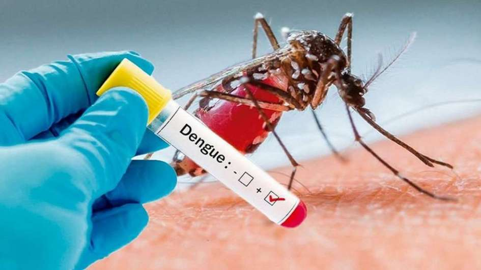 Recomiendan extremar las medidas de limpieza para combatir el dengue