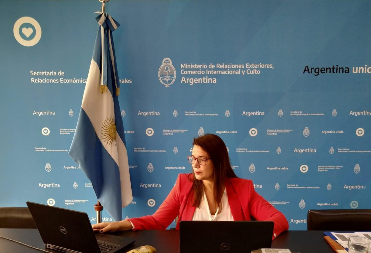 Reunión virtual del Grupo de Comercio e Inversiones del G20